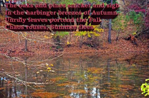 Stillness_with text edited