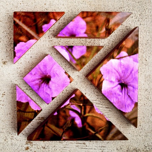 2016-11-11 Purple flowers pieces