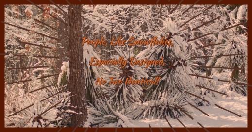 Redeeming Snowflakes